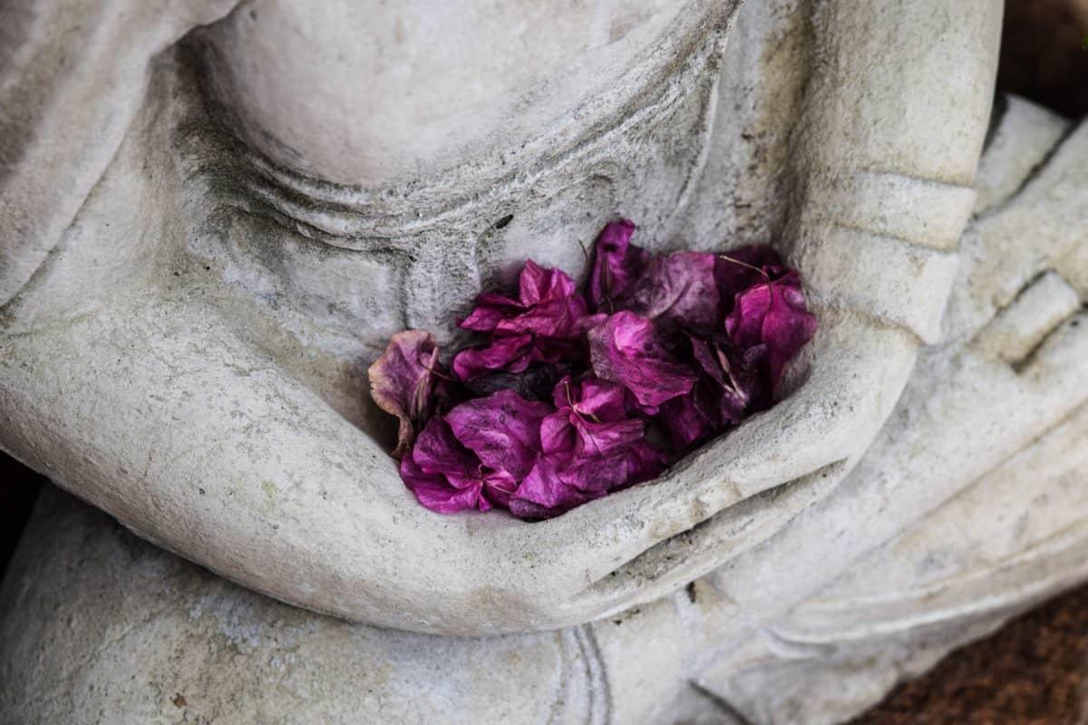 Медитацията – Как да постигнем желания ефект от нея?