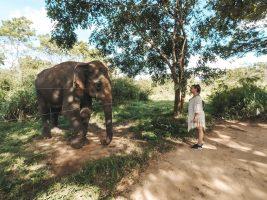 Шри Ланка – Перлата на Азия през моите очи (Част I)