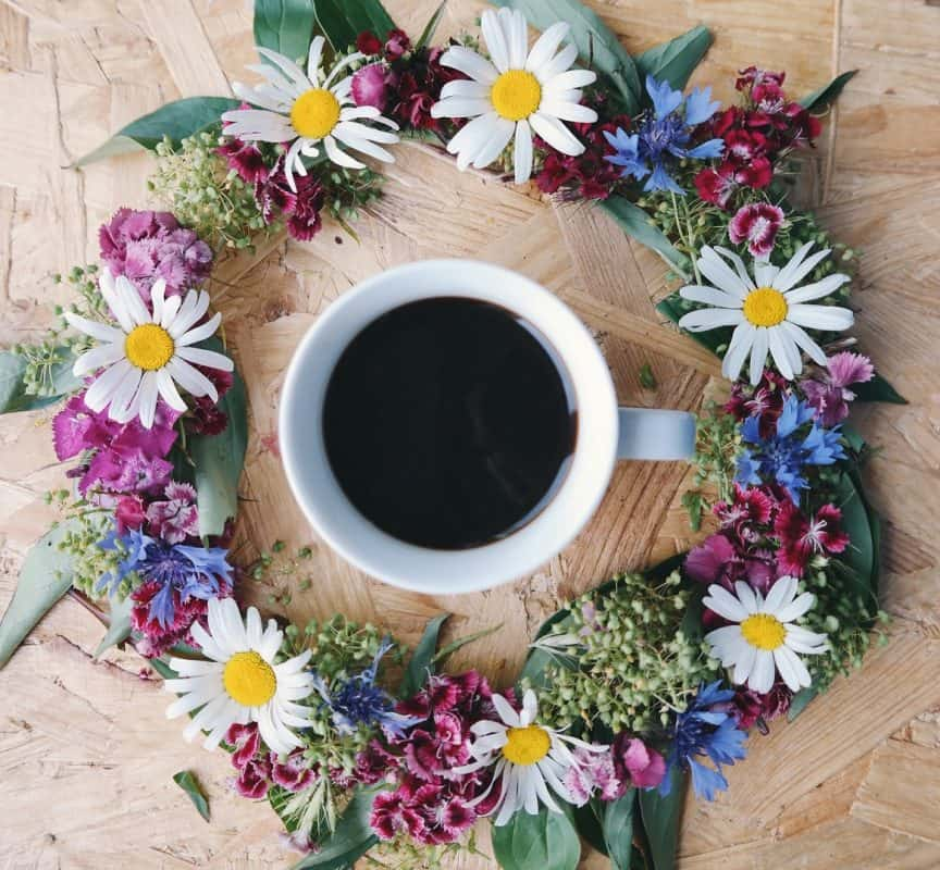 Кафе цветница
