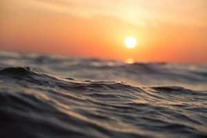 July morning – свободата да плуваш към слънцето